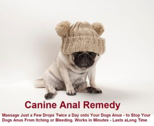 Dog Anal Formula - for Canine Anal Itching and Bleeding